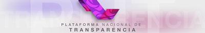 Acceso a la Plataforma Nacional de Transparencia
